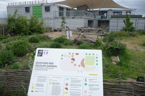 Barking Riverside Wildlife Garden